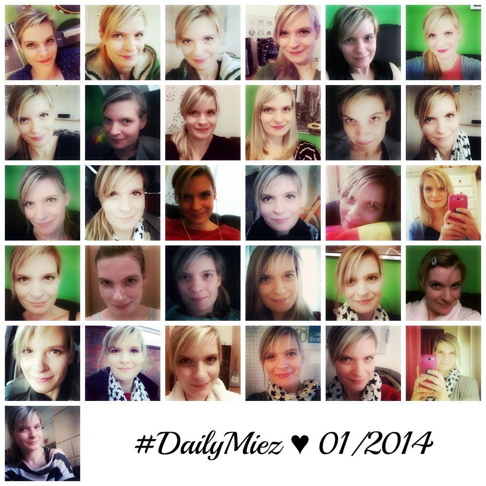 01. - 31. Januar 2014  #DailyMiez
