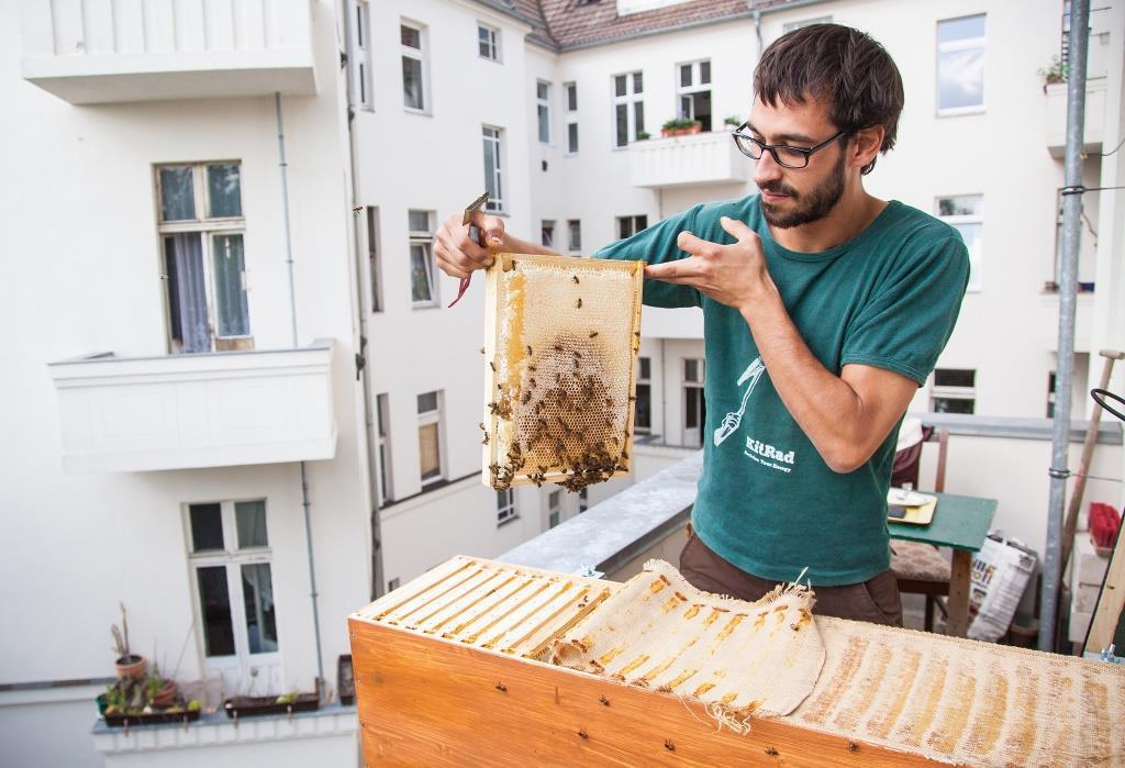 Gewinne Deine eigene BienenBox!