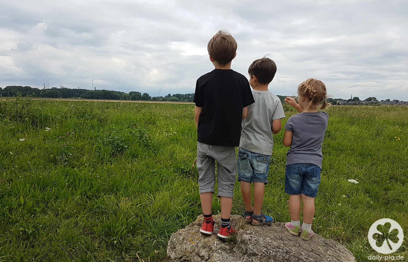 Friedhöfe, Spielplätze und der Rhein